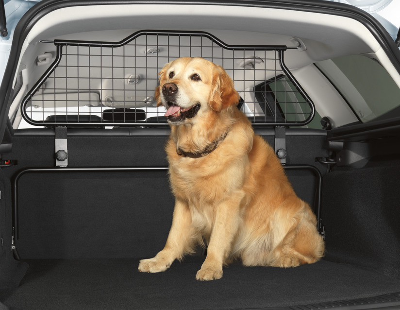 Genuine & Approved Dog Guards For Cars | Car Accessories Plus